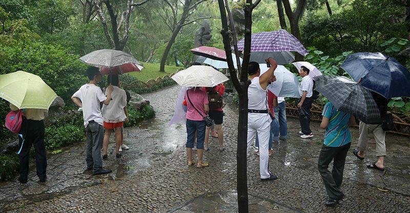 Aujourd'hui c'est la pluie