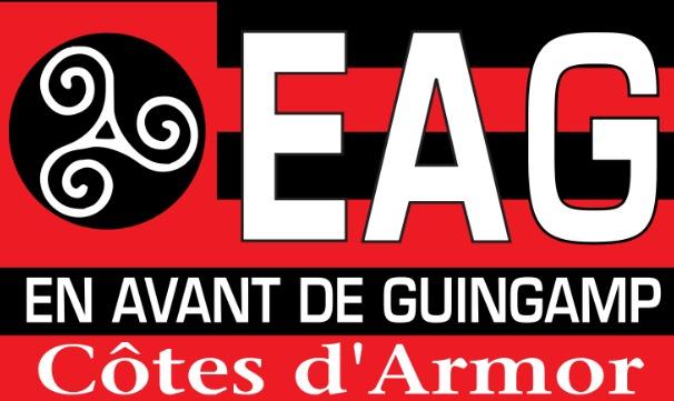 Guingamp bat le Toulouse Football Club et sauva sa place en ligue1