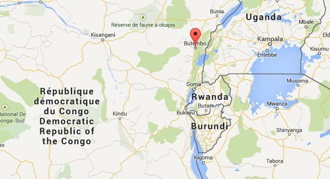 Des casques bleus tués en République Démocratique du Congo