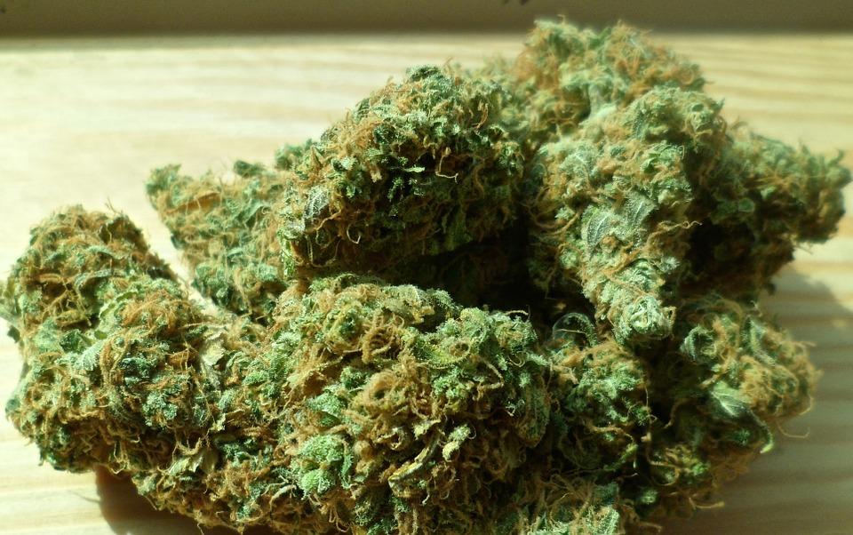 Saisie record de résine de Cannabis à Toulouse
