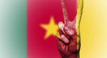 Violences meurtrières au Cameroun après la déclaration d'indépendance d'une région