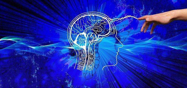 La semaine du Cerveau au Quai des savoirs à Toulouse