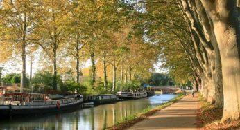 Canal du Midi marque déposée