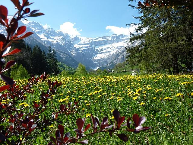 En août le Parc naturel des Pyrénées propose des animations dans les vallées