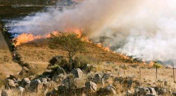 Occitanie – Très fort risque d'incendie, appel à la prudence ce lundi