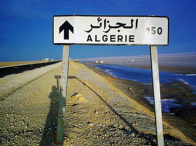 Incendies en Algérie : des dizaines de morts