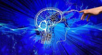 VIDÉO. Angers : le service neurochirurgie s'équipe d'un robot ultramoderne