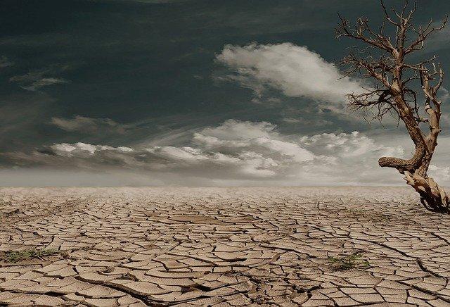 Le réchauffement climatique, une menace pour notre santé
