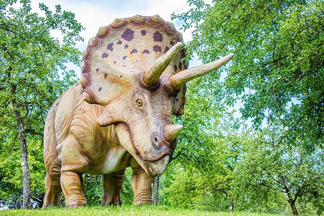 Découvrez Big John le plus grand squelette de Tricératops